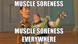 Toy Story_Muscle Soreness